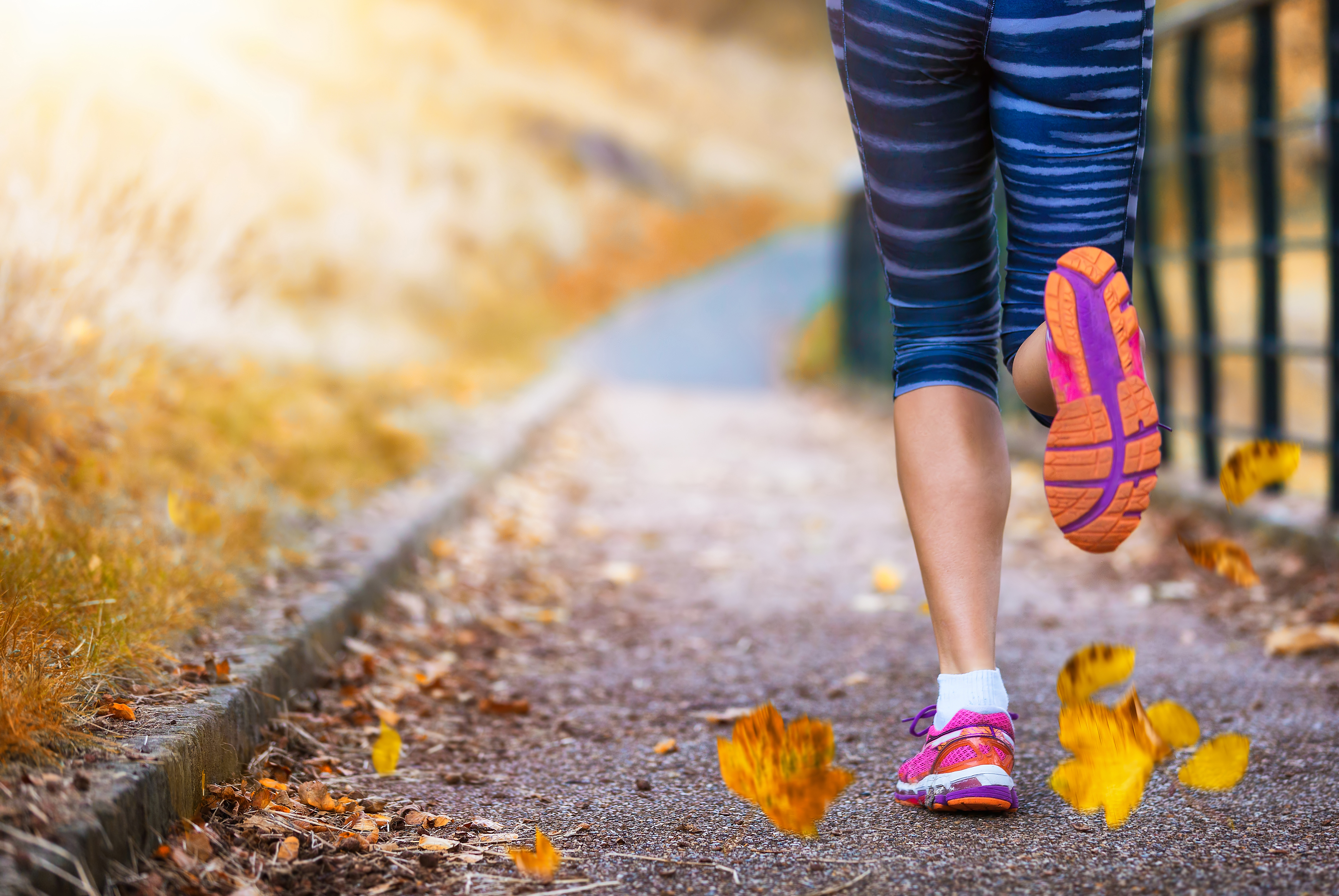 run-fall-wellness-tips